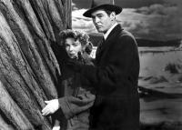 Noir, Classic Movies, 1950s Movies
